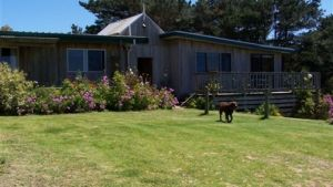 Clifton Beach Lodge - Accommodation NSW