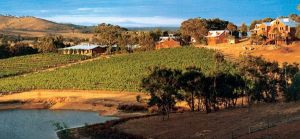 Warrenmang Vineyard  Resort - Accommodation NSW