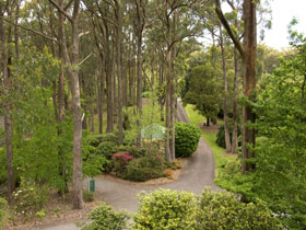 Mount Lofty Botanic Garden - Accommodation NSW