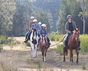 Horse Riding at Oaks Ranch and Country Club - Accommodation NSW