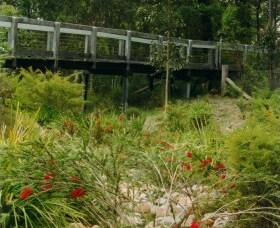 Eurobodalla Botanic Gardens - Accommodation NSW