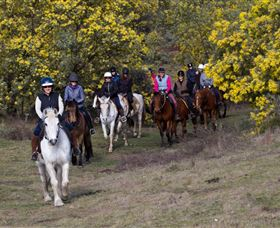 Burnelee Excursions on Horseback - Accommodation NSW