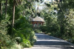 Royal Botanic Gardens Victoria - Accommodation NSW