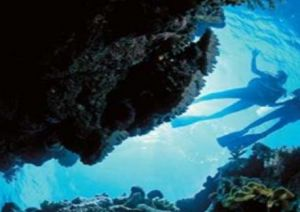 Deep Sea Divers Den - Accommodation NSW