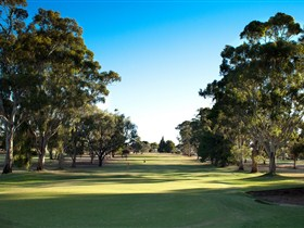 Loxton Golf Club - Accommodation NSW