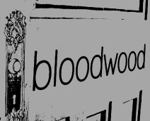 Bloodwood - Accommodation NSW