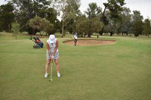 Nine and Dine Golf and Buffet Dinner with Seafood - Accommodation NSW