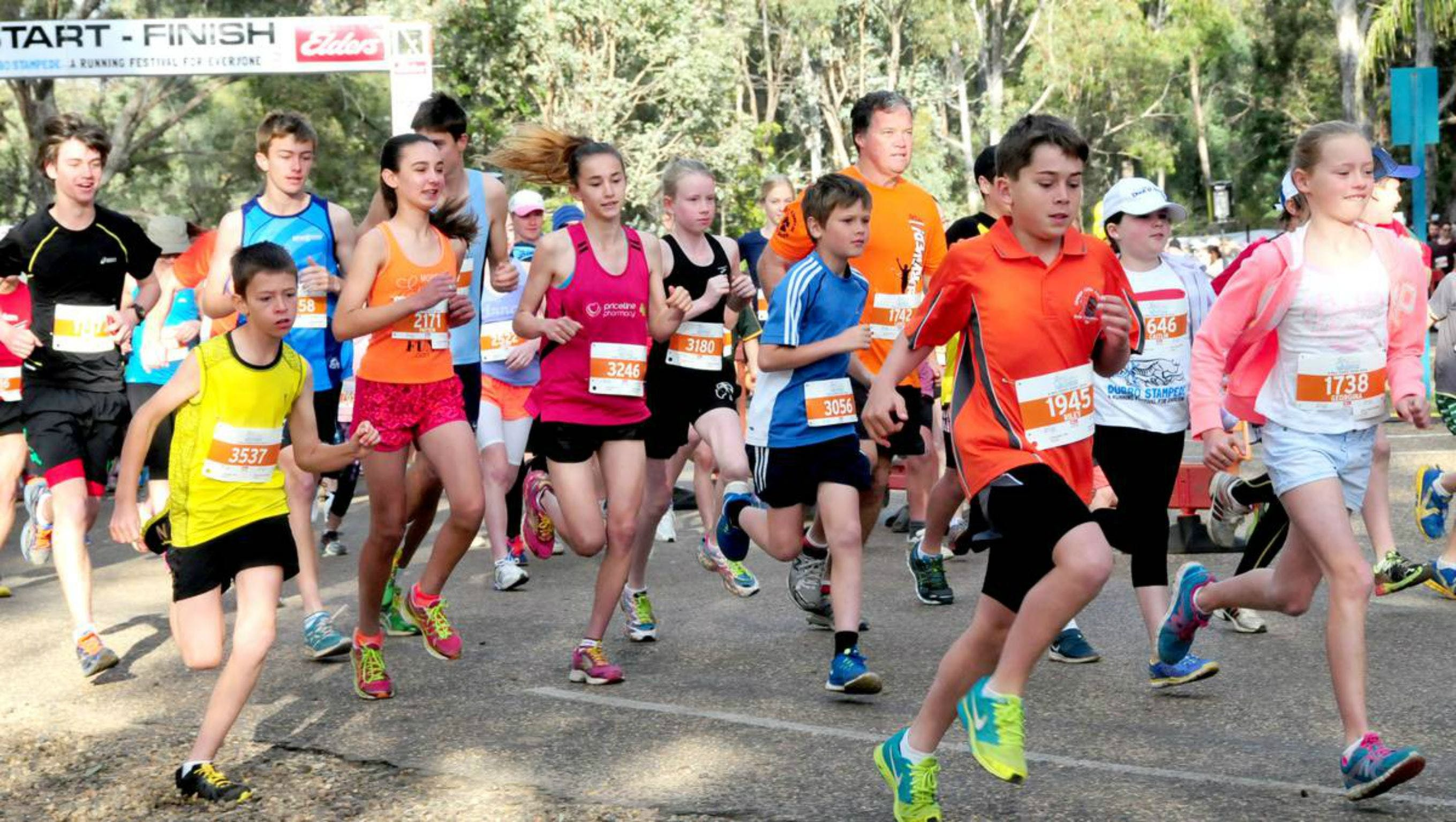 MAAS Group Dubbo Stampede Running Festival - Accommodation NSW
