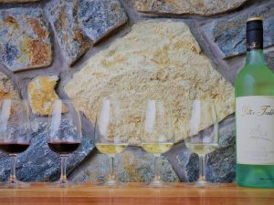 Peter Teakle Wines - Accommodation NSW