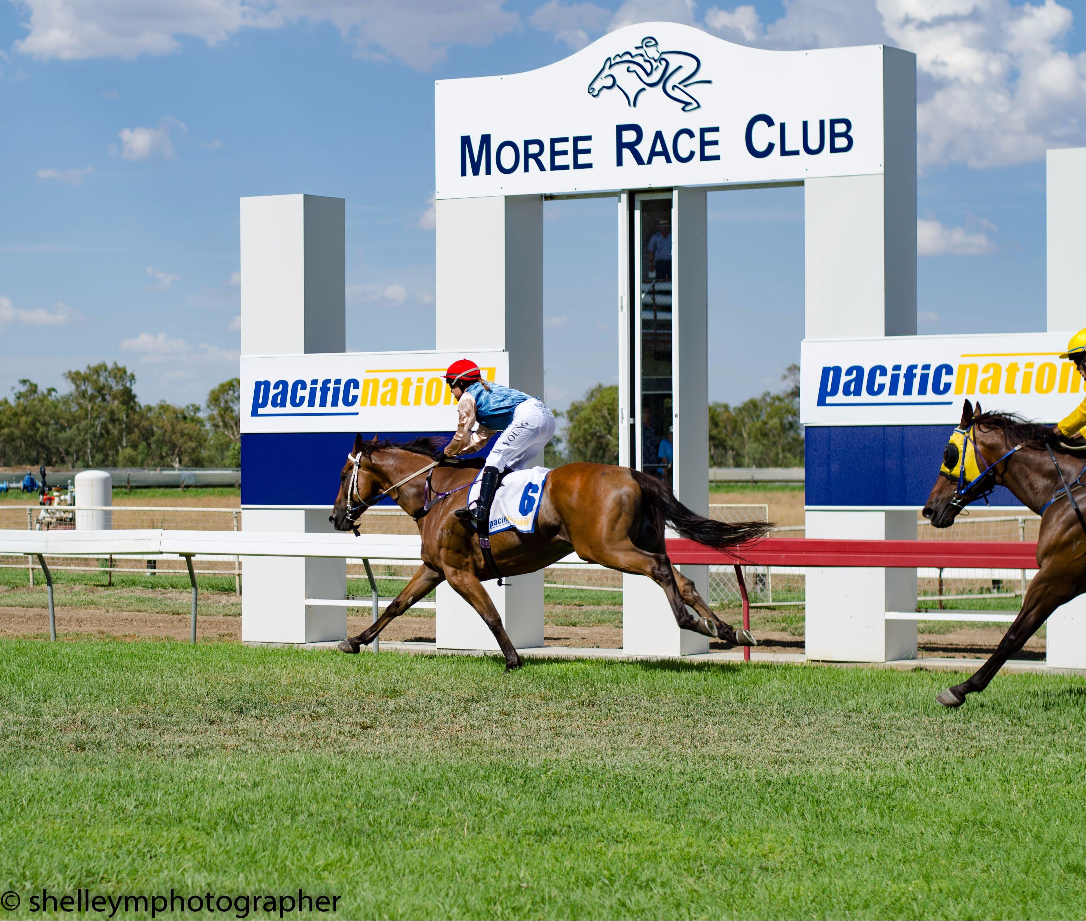 Moree Race Club TAB Race Day - Accommodation NSW