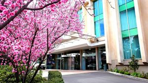 Rydges Capital Hill Canberra - Accommodation NSW