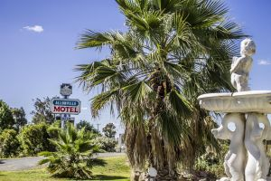 Allonville Gardens Motel - Accommodation NSW