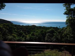 Daintree Oceanview Retreat - holiday home - Accommodation NSW