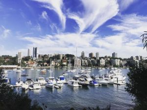 Double Bay Harbour-front apartment with stunning views - Accommodation NSW