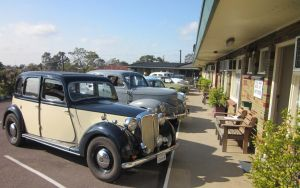 Maitland City Motel - Accommodation NSW