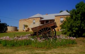 Mt Pleasant Holiday Homestead - Accommodation NSW