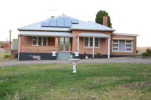 Pink Gums Farmstay - Accommodation NSW