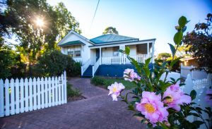 Queen Bee Cottage Milton - Accommodation NSW