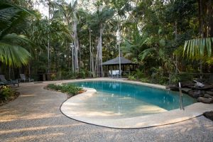 Amore On Buderim Rainforest Cabins - Accommodation NSW